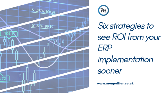 ROI from ERP