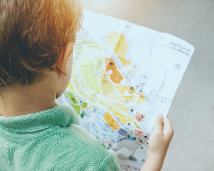 Young boy reading an attraction map